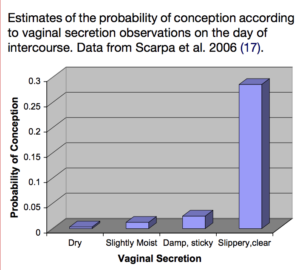 Probability of conception according to vaginal secretions on day of intercourse